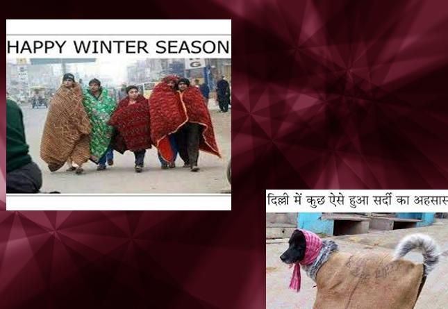 winter funny photo 5
