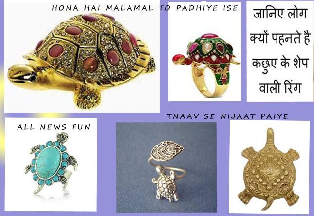 febg shui kachua benefits hindi