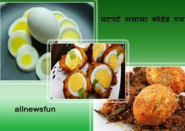 चटपटे मसाला कोडेड एग – Egg masala recipe in hindi